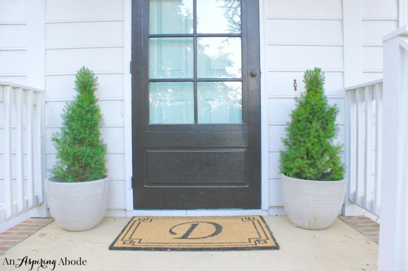 Teal-Front-Door-4